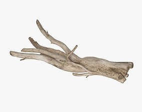 Snag branch 3D model