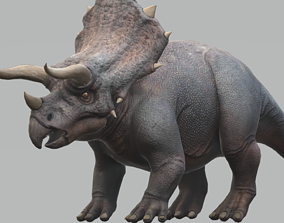 Triceratops with Animation 3D model
