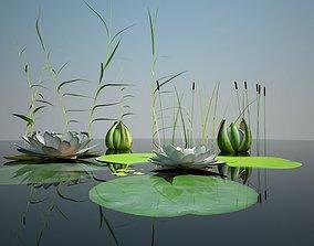3D asset Collection Vegetation for pond