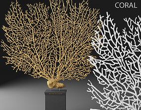 Coral 3D nautical
