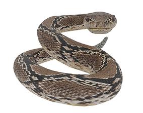 Low Poly Snake 3D model