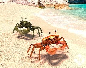 3D asset Crabs