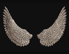 3D print model Wings