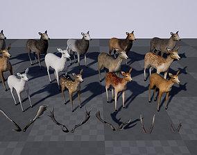 Deer Modular Pack 3D asset rigged