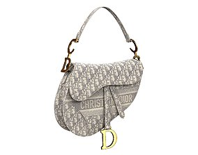 Dior Saddle Bag Gray Oblique Embroidery 3D
