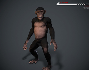 Chimp Lowpoly rigged 3D model