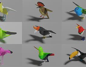 3D model 9 Exotic Birds Pack