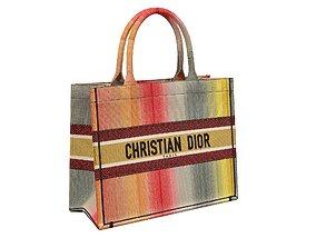 Dior Bag Small Book Tote Multicolor Stripe 3D asset