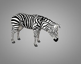 Zebra 3D model animated realtime