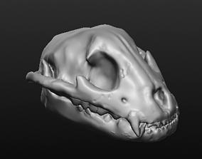Jaguar Skull 3D printable model