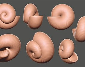 Sea shell - spiral-shaped 3D model