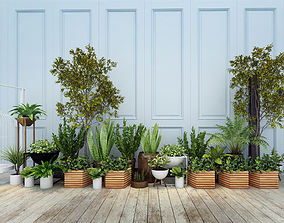 flowerbed Plants 3D model