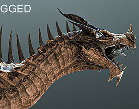 Dragon 3D asset rigged realtime prehistoric