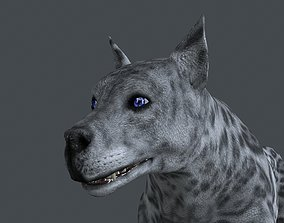 UVWD-021 Dog textures only 3D