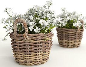 3D model Flowers in a basket