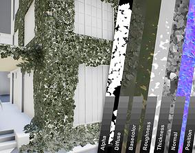 Ivy lowpoly modular assets 3D model