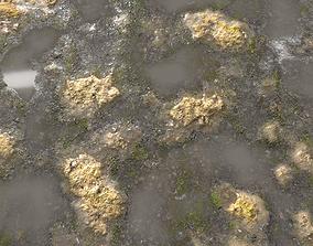 3D Muddy Water with algae Seamless 2 PBR