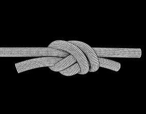 3D asset water knot