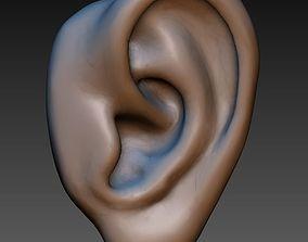 Ear Human ear 3D printable model
