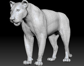 lion posed model
