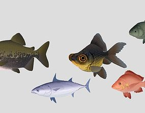 Fish Collection 02 3D model