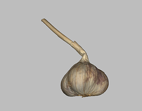czosnek Garlic 3D asset game-ready PBR