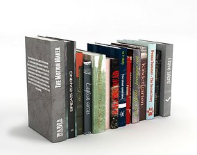 3D model Various Standing Books