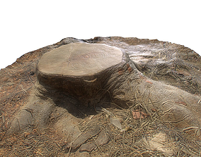 Dead Ground Tree Stump 3D model