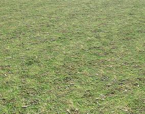 3D Grass terrain 8