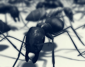 Lowpoly Ant 3D model