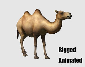 3D camel animation