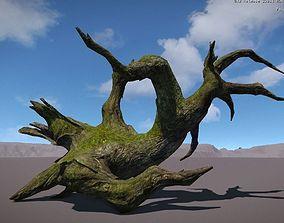 Ancient Tree V13 3D asset