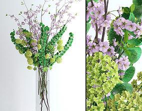 Viburnum plus Moluccella and Cherry blossom 3D model