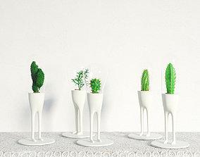 plant 24 am141 3D model