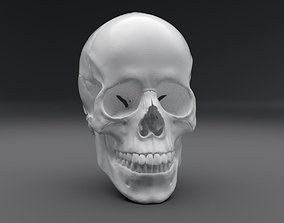 Human Skull Realistic Articullated 3D printable model