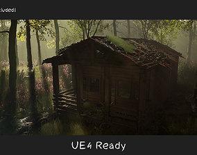3D asset Destroyed Old House Hut - A