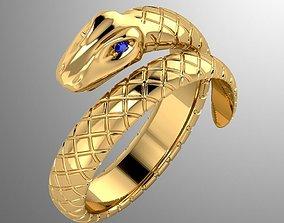 Ring akr 2 3D print model