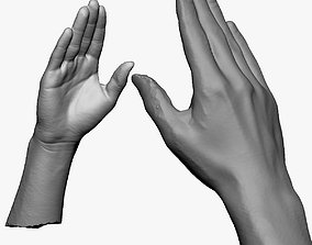 3D model 001161 straight hand