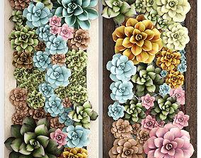 3D Echeveria Vertical garden