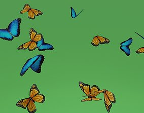 butterflies animation 3D asset