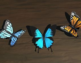 Low Poly Butterfly 3D model