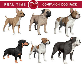 Companion Dog Pack 3D model