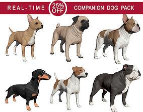Companion Dog Pack 3D model