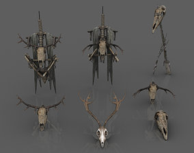 3D asset Animal Skulls and Totems