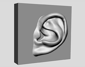 Ear Printable