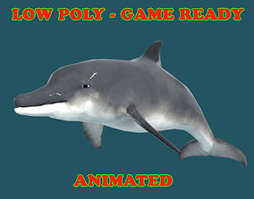 Low poly Dolphin Fish Animated - Game Ready 3D asset