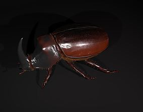 3D model low-poly Rhinoceros beetle