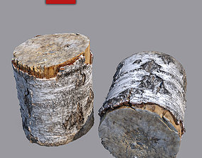3D Stump 1 forest