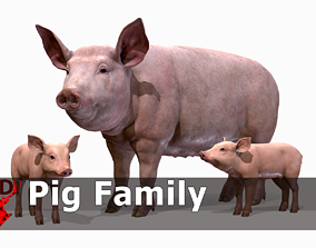 PIG FAMILY 3D model