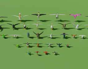 Birds Pack 3D model low-poly